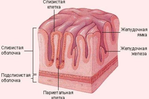 Субатрофия