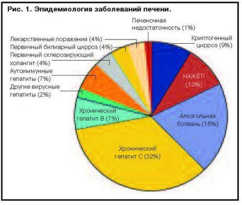 Эпидемиология заболеваний печени