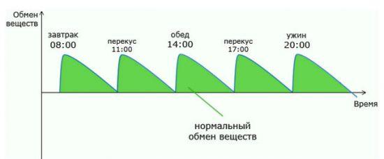 График питания по часам