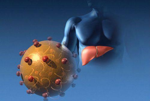 Вирус гепатита Е