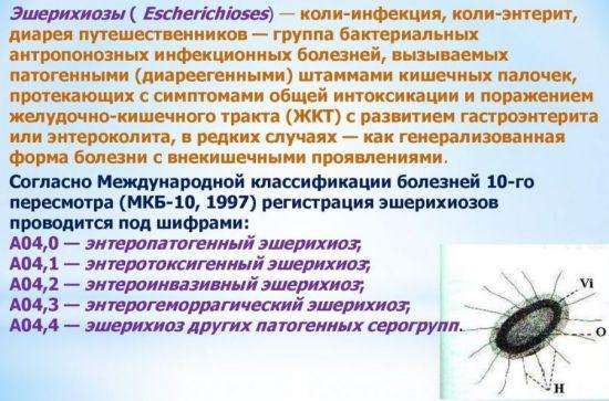Эшерихиозы