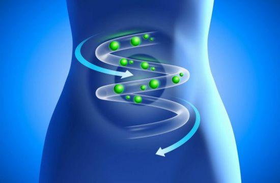 Схема продвижения веществ по кишечнику