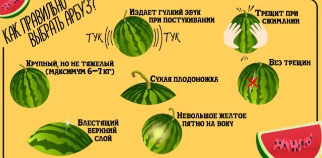 Как выбирать арбуз