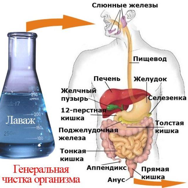 Лаваж кишечника