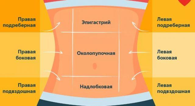 Схема локализации болей в животе
