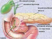 Гепатобилиарная система и поджелудочная железа