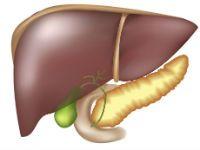 Болезни печени и поджелудочной железы: симптомы, как их вылечить, оздоровить