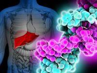Носительство гепатита С